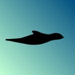 Illedan's avatar